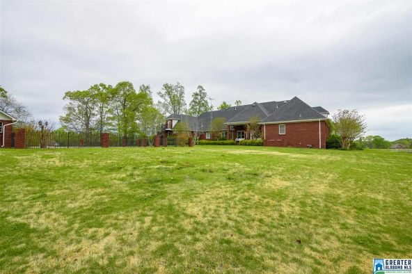 65 River Heights Dr., Cleveland, AL 35049 Photo 48