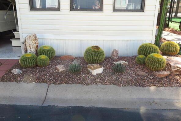 3710 S. Goldfield Rd., # 290, Apache Junction, AZ 85119 Photo 52
