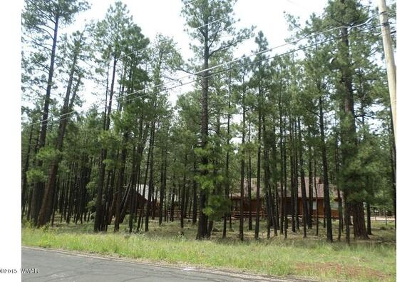 7828 Buck Springs Rd., Pinetop, AZ 85935 Photo 6
