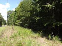 Home for sale: 4.64 Ac. Occoneechee Trail, Halifax, VA 24558