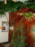 Home for sale: 125 Eubank Blvd. N.E., Albuquerque, NM 87123