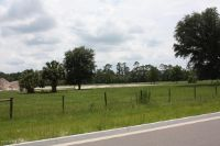 Home for sale: 0 Us Hwy. 17, Green Cove Springs, FL 32043