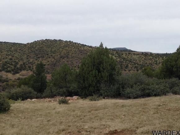 17751 E. Black Bear Trail, Kingman, AZ 86401 Photo 8