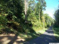 Home for sale: Lot 8 & 9 Hyatt St., Guntersville, AL 35976