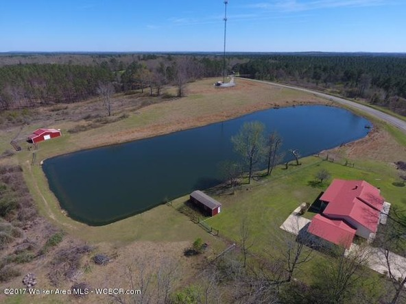 5125 Smith Lake Dam, Jasper, AL 35504 Photo 34