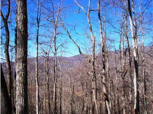 Hwy. 64 East, Hayesville, NC 28904 Photo 6
