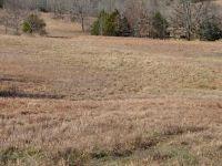 Home for sale: Tbd Silverwood Ln., Salem, AR 72576