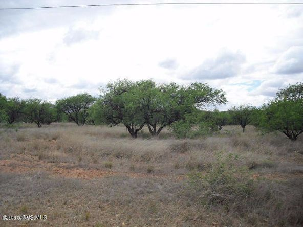 16005 W. Ranger Rd., Arivaca, AZ 85601 Photo 5