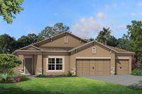 Home for sale: 8213 Mallow Mirror Ln., Land O' Lakes, FL 34637
