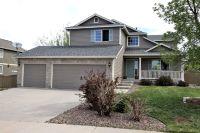 Home for sale: 6059 Kingsfield St., Castle Rock, CO 80104