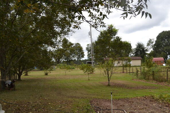 1723 Omussee, Dothan, AL 36303 Photo 16