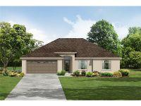 Home for sale: 120 Aurora Ln., Kissimmee, FL 34758