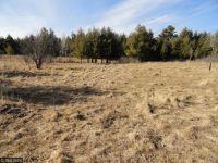 Home for sale: Sunnyside Rd., Pine City, MN 55063