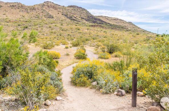25409 N. 49th Dr., Phoenix, AZ 85083 Photo 62