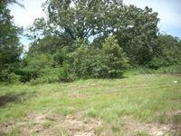 Home for sale: Tbd Rockdale Rd., Sulphur Springs, TX 75482