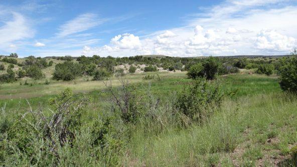 99 River Springs Ranch Unit 3 --, Saint Johns, AZ 85936 Photo 9