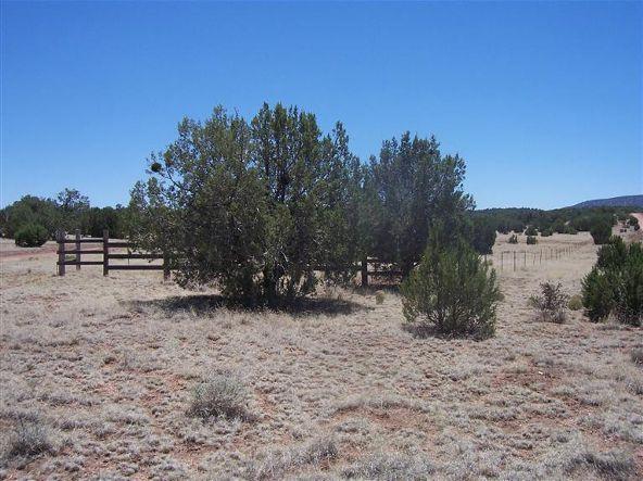 56731 N. Potrero Parkway, Seligman, AZ 86337 Photo 4