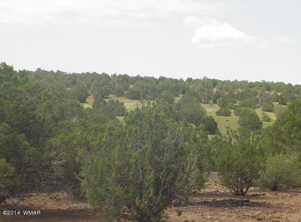 1b N. 8690, Concho, AZ 85924 Photo 1