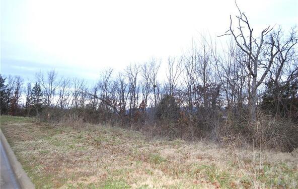 181 N. Skyview Ln., Fayetteville, AR 72701 Photo 11
