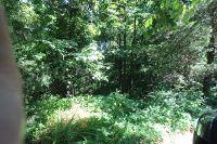 Home for sale: Tbd Cedar Gap Rd., Seymour, MO 65746