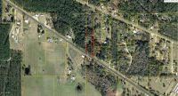 Home for sale: 00 Hwy. 22, Wewahitchka, FL 32465
