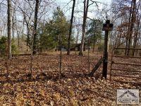 Home for sale: 235 White Oak Trail, Carlton, GA 30627