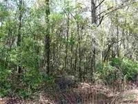 Home for sale: 5b Parramore Shores Rd., Tallahassee, FL 32310