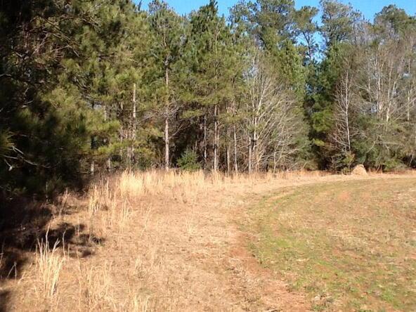 1 County Rd. 377, Opp, AL 36467 Photo 14