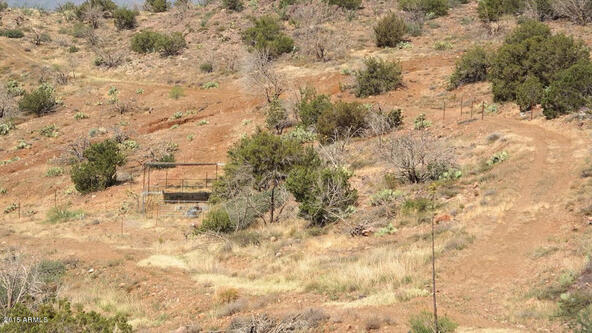 65 N. Juans Canyon (Forest Service) Rd., Cave Creek, AZ 85331 Photo 21