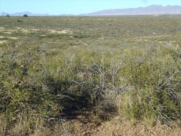 42 Ac S. Ghost Rider Rd., Portal, AZ 85632 Photo 10