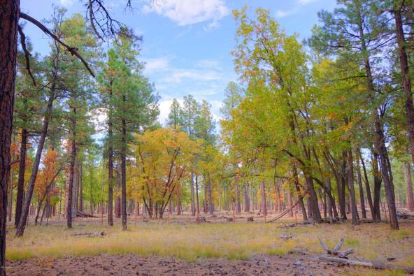 8100 W. Dk Ranch Rd., Flagstaff, AZ 86005 Photo 28