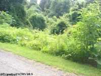 Home for sale: Lot 138 Ryan Rd., Fairmont, WV 26554