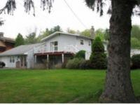 Home for sale: 31 Dick Merritt Rd., Windsor, NY 13865