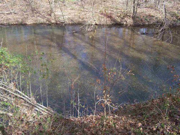 24 Acres Glazypeau Rd., Murfreesboro, AR 71958 Photo 3