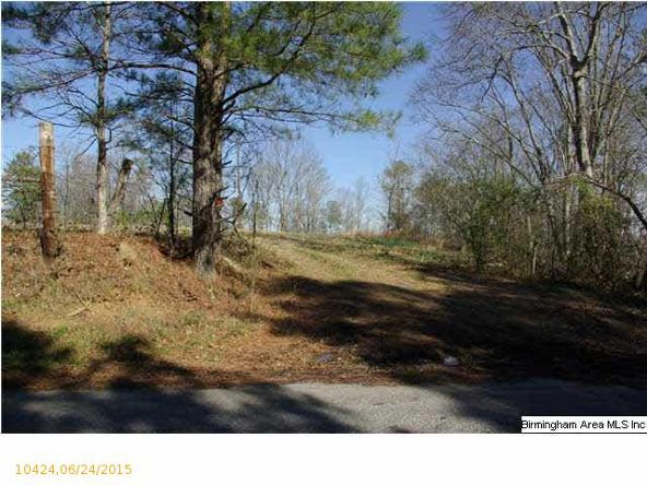 4 Horton Mill Rd., Oneonta, AL 35121 Photo 55