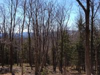 Home for sale: Lot#1 Woodman Rd. Ext, Dover, VT 05356