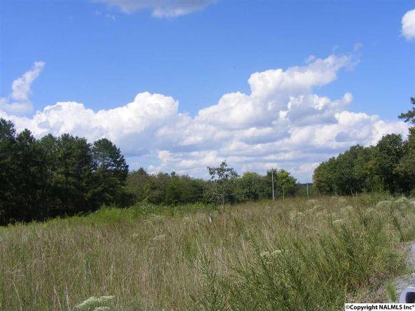 1030 County Rd. 664, Valley Head, AL 35989 Photo 7
