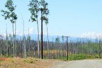 Home for sale: L7 B1 S. Preston Hills Dr., Wasilla, AK 99654