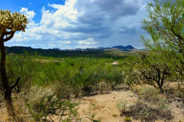 14601 N. Quiet Rain Dr., Oro Valley, AZ 85755 Photo 8