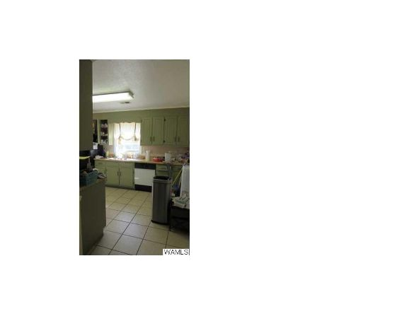 4101 Mitt Lary Rd., Northport, AL 35475 Photo 8