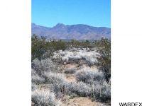 Home for sale: 10 Cactus Rd., Yucca, AZ 86438