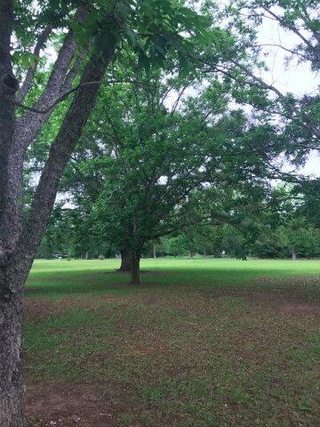 1158 Mccoy, Cottonwood, AL 36320 Photo 9