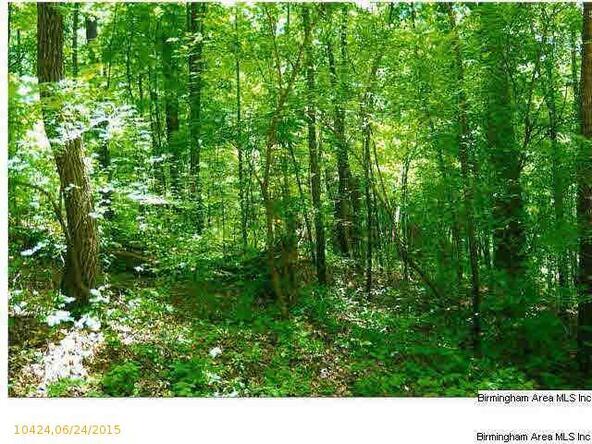 754 Lakeview Crest Dr., Pell City, AL 35128 Photo 1