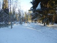 Home for sale: Lot 2 Clearwater Estates, Nordman, ID 83848