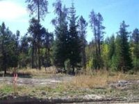 Home for sale: 260 Bald Eagle Ln., Donnelly, ID 83615