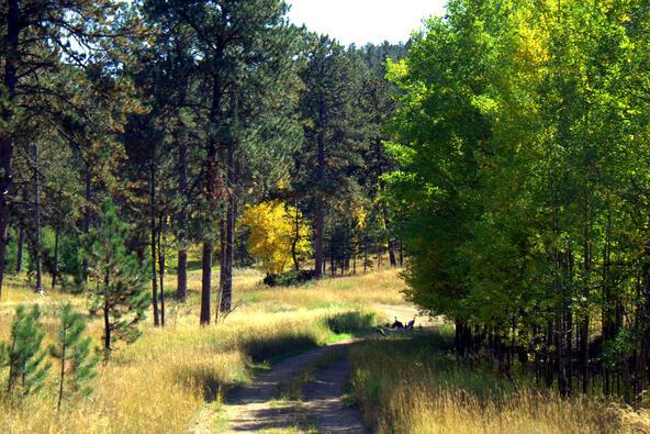 Lot 5, Powder House Trail, Lead, SD 57754 Photo 16