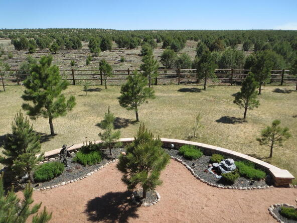 2295 Bison Ranch Trail, Overgaard, AZ 85933 Photo 43
