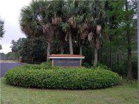 Home for sale: 2004 Hawks Landing Pl., Sebring, FL 33875