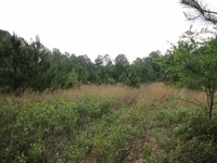 Home for sale: Vacant E. Washington Hwy., Monticello, FL 32344