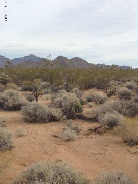 757 N. Roy Rogers Dr., Yucca, AZ 86438 Photo 2